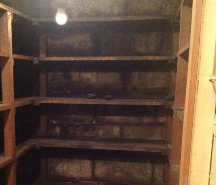 Darkened spots in emptied basement root cellar indicate mold formation.
